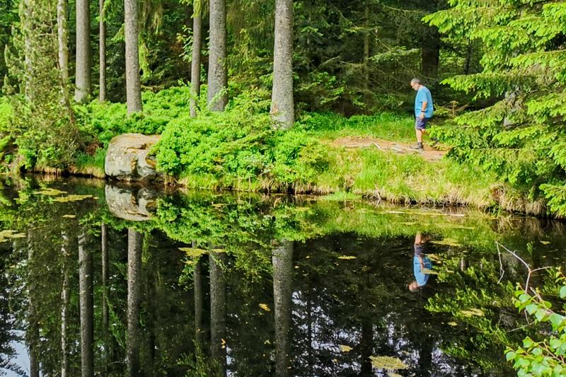 Natur als SpiegelBild – auf Entdeckungsreise mit und ohne Kamera